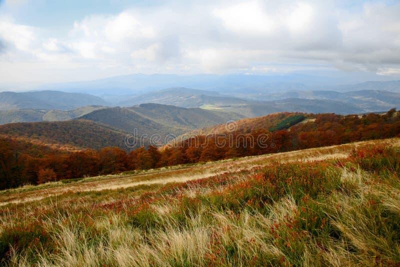 Download Montagne immagine stock. Immagine di scena, terra, albero - 7308909