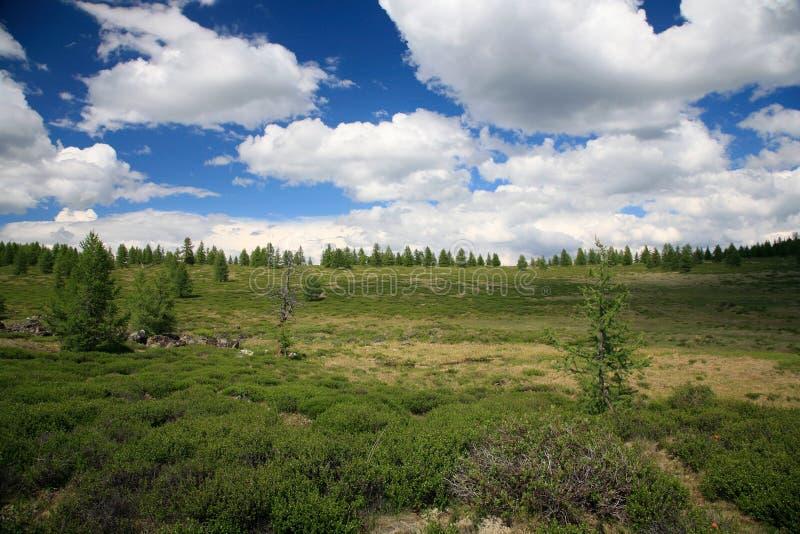 Montagne ad ovest di Sayan immagini stock libere da diritti