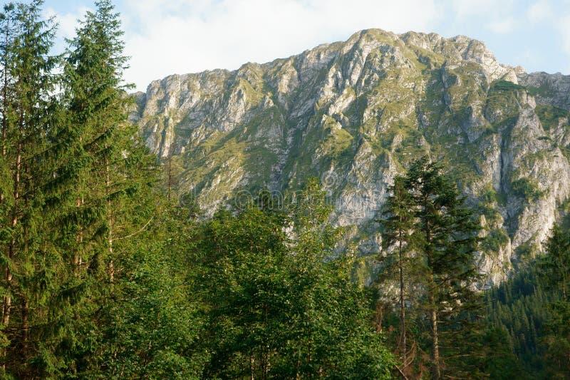 Montagne au sundawn photo libre de droits