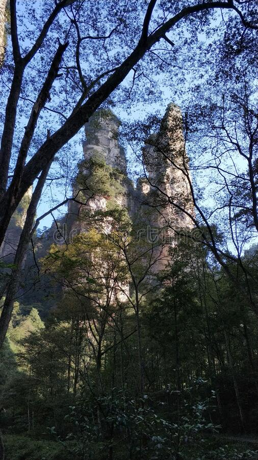 Montagne Avatar da Golden Whip Stream Zhangjiajie Cina fotografia stock