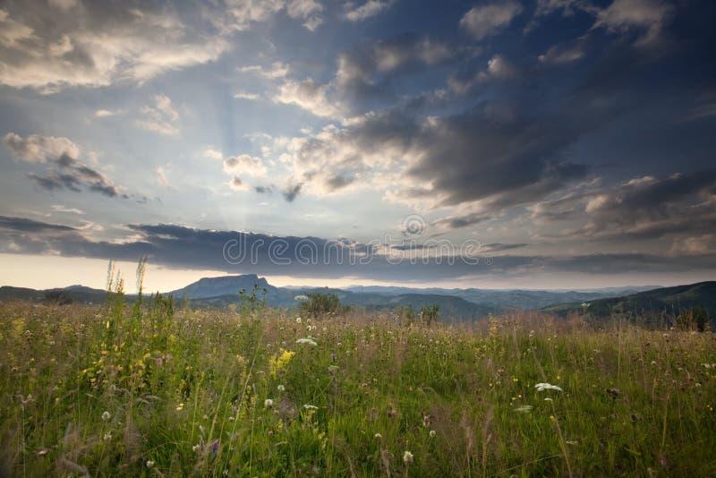 Montagne carpathienne photos libres de droits