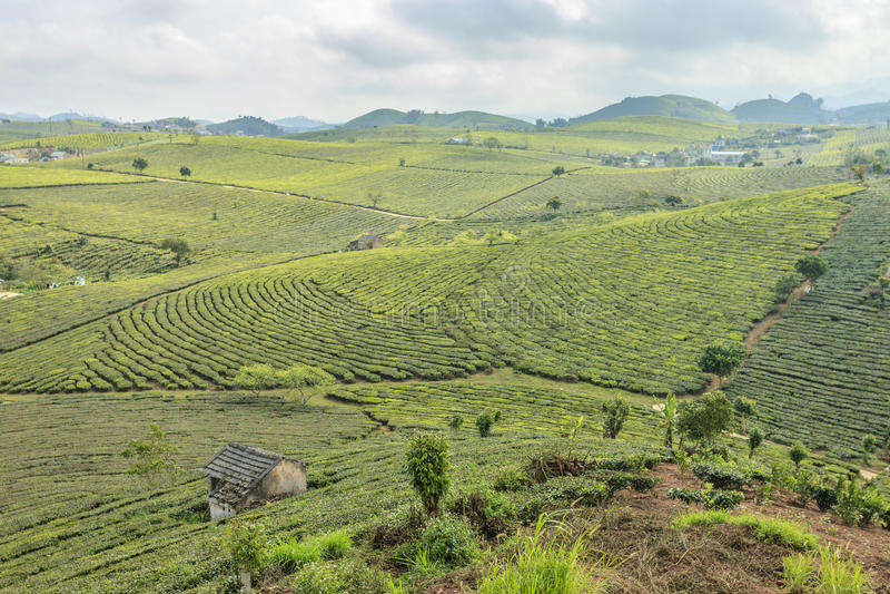 Montagne chez le Vietnam du Nord photos libres de droits
