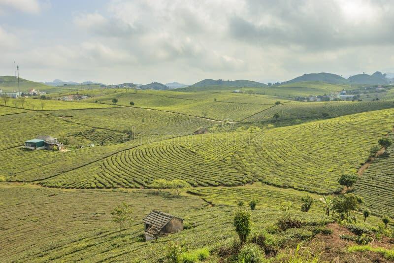 Montagne chez le Vietnam du Nord photo libre de droits