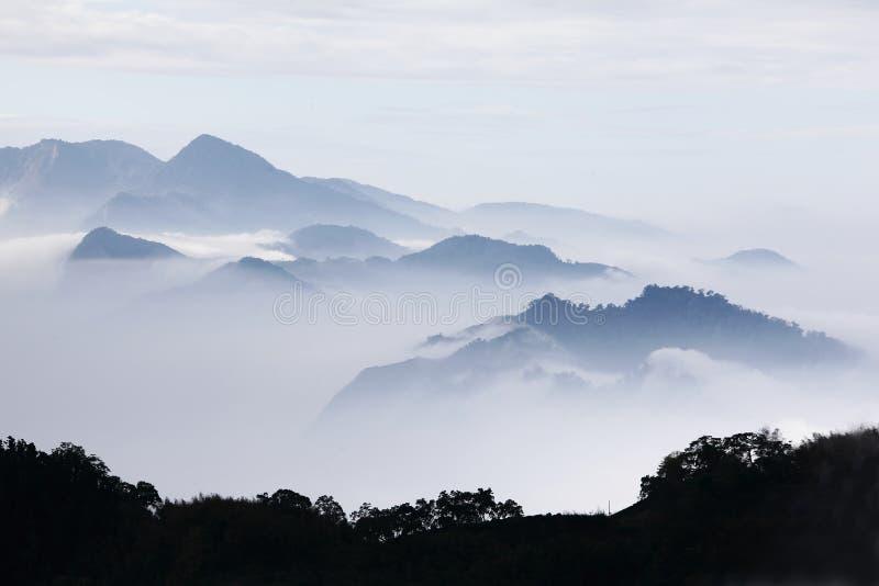 Montagne con gli alberi e nebbia nel colore monocromatico fotografia stock
