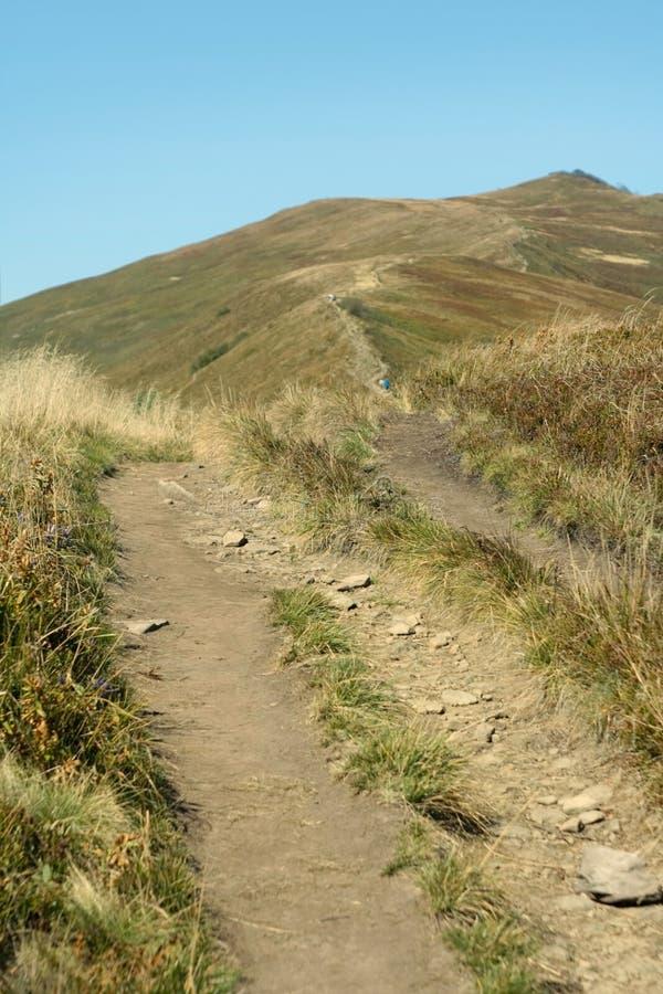 Montagne couverte par herbe baignée au soleil Sunny Cloudless Sky bleu Sentier piéton vert photo libre de droits