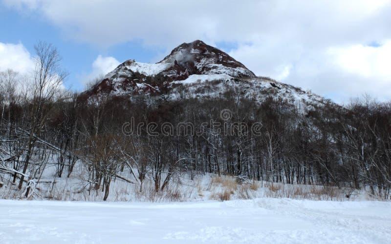 Montagne couverte par le backround de neige en ciel bleu photos libres de droits