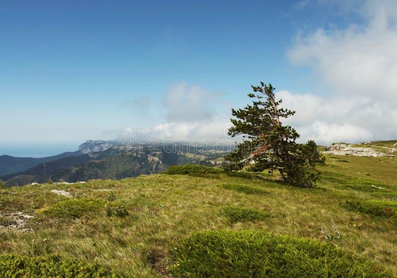 Montagne criméenne images libres de droits