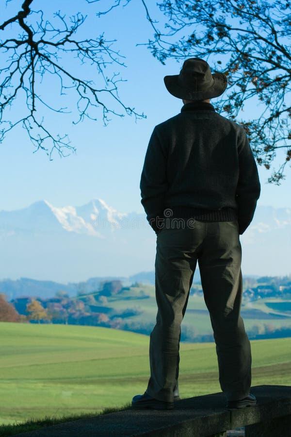 Montagne d'arbre de cowboy images stock