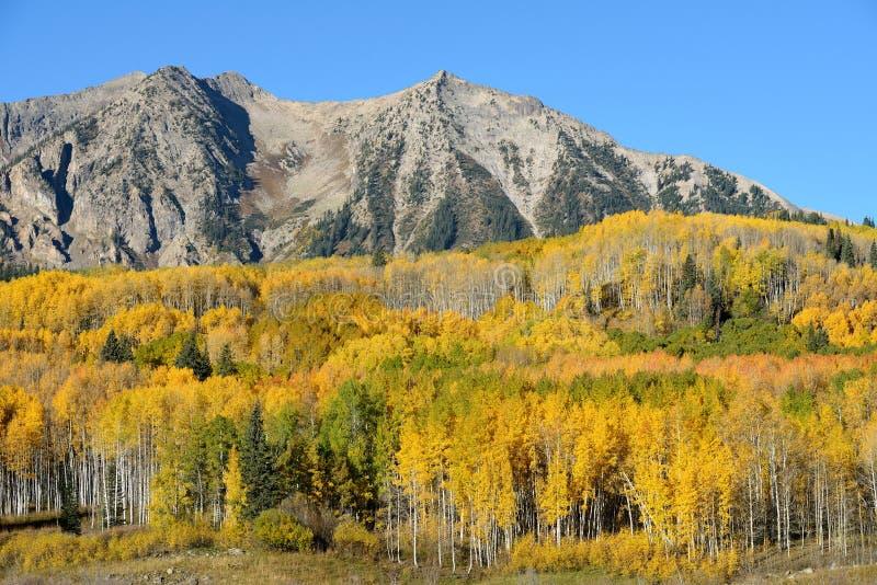 Montagne d'automne photo stock
