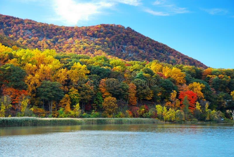 Montagne d'automne avec le fleuve de Hudson images libres de droits