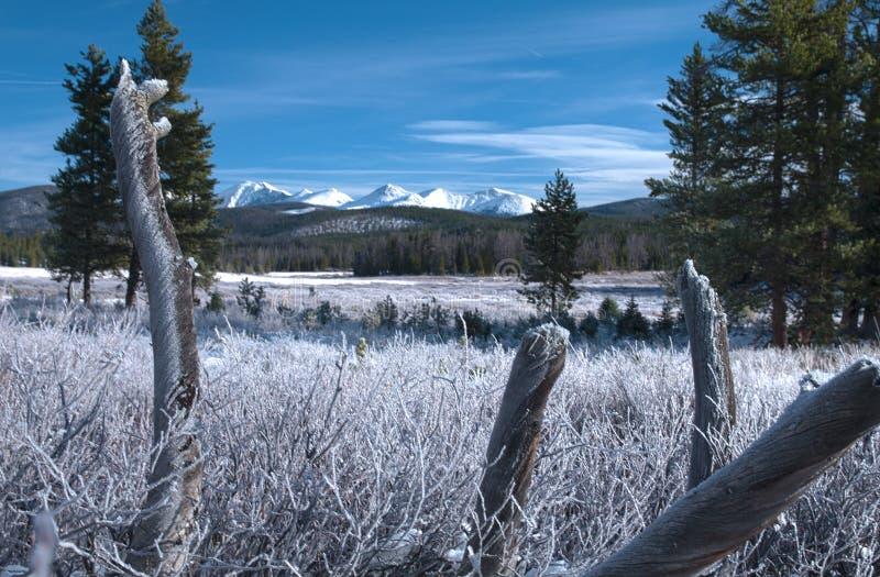 Montagne d'hiver et rondin givré images libres de droits