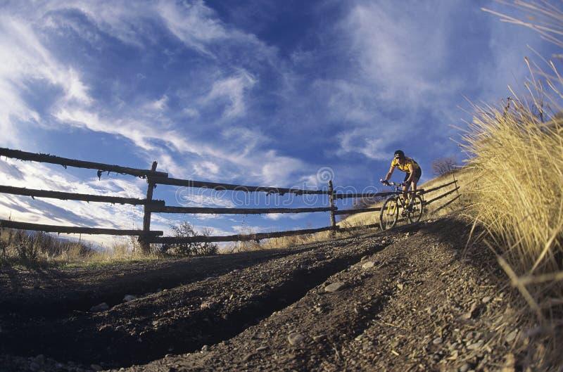 Montagne d'homme faisant du vélo le long du chemin de pays photos libres de droits