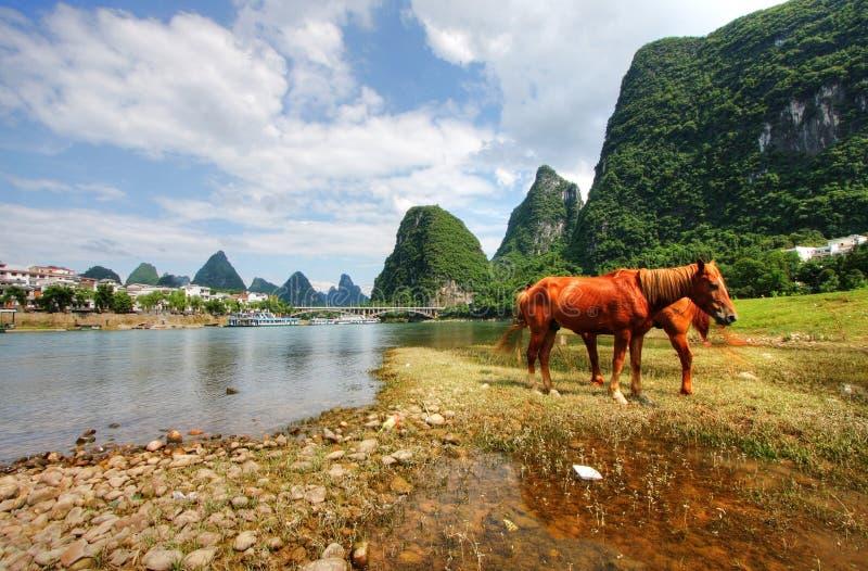 Download Montagne d'horizontal photo stock. Image du indigène, idyllique - 8661598