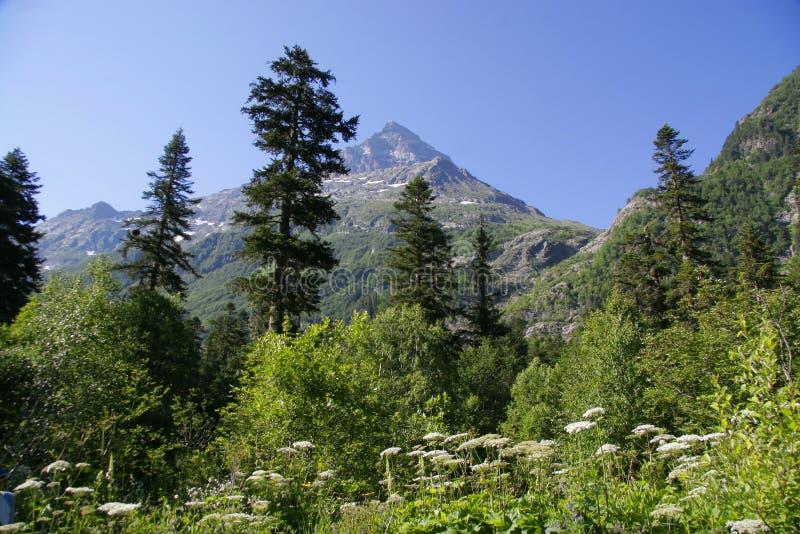 montagne de Caucase photographie stock libre de droits