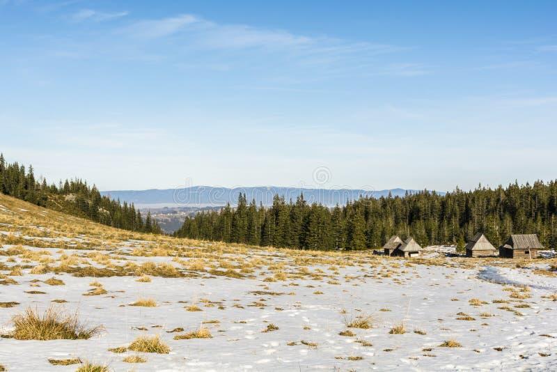 Montagne de clairière dans la saison d'automne image libre de droits