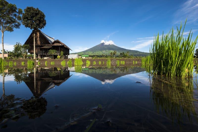 Montagne de Dempo photo libre de droits