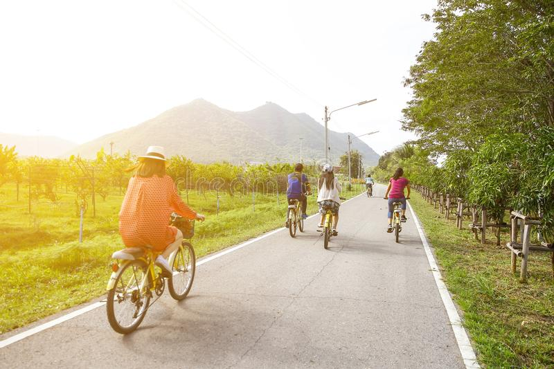 Montagne de famille faisant du vélo sur la traînée de forêt, vue arrière photos libres de droits