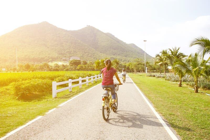 Montagne de famille faisant du vélo sur la traînée de forêt, vue arrière photo libre de droits