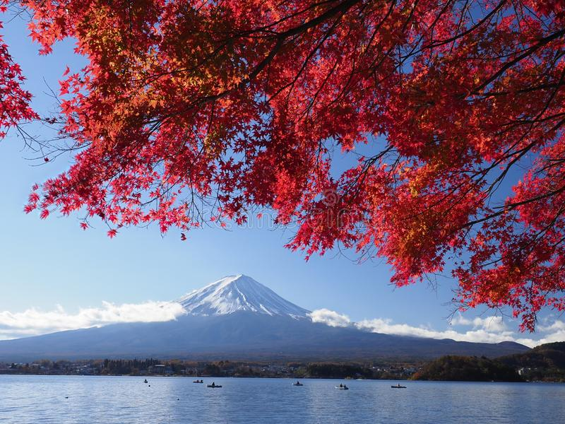 Montagne de Fuji avec la feuille d'érable rouge et tourisme sur le bateau dans le lac images libres de droits