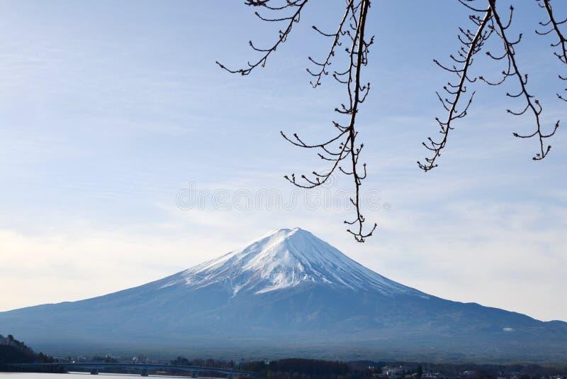 Montagne de Fuji, la grande montagne symétrique image stock