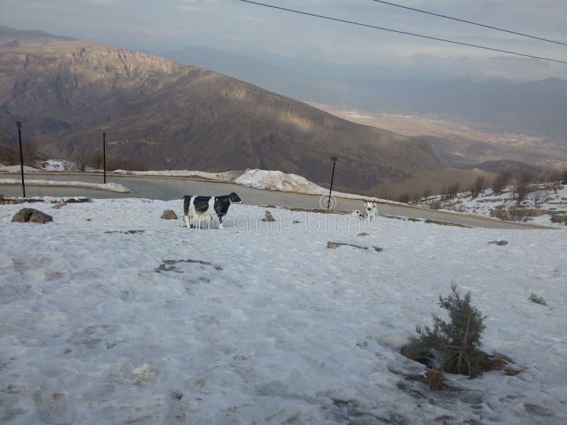 Montagne de Korek photo libre de droits