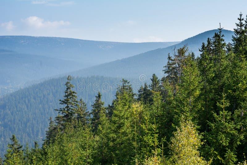 Montagne de Krkonose près de Harrachov, République Tchèque photo stock