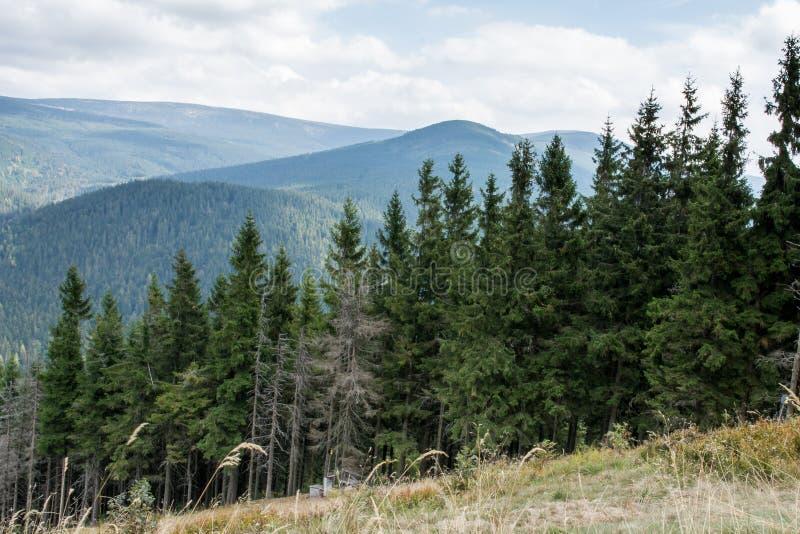 Montagne de Krkonose près de Harrachov, République Tchèque images stock