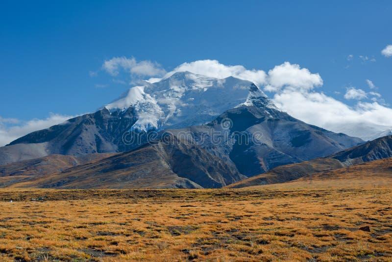 Montagne de l'Himalaya photographie stock libre de droits