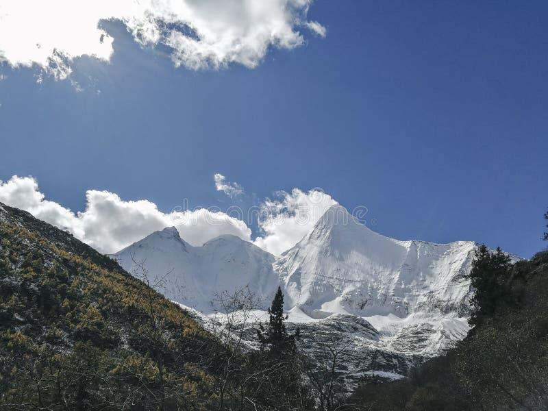 Montagne de neige sur le plateau photos libres de droits