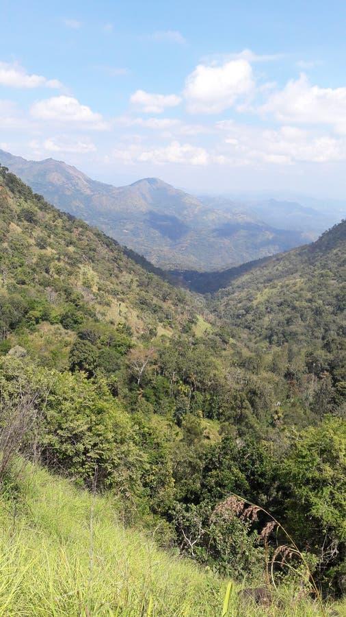 montagne de pays de colline au Sri Lanka photos libres de droits