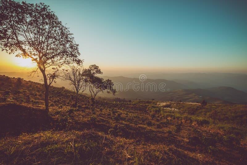 Montagne de paysage de cru au coucher du soleil photos libres de droits