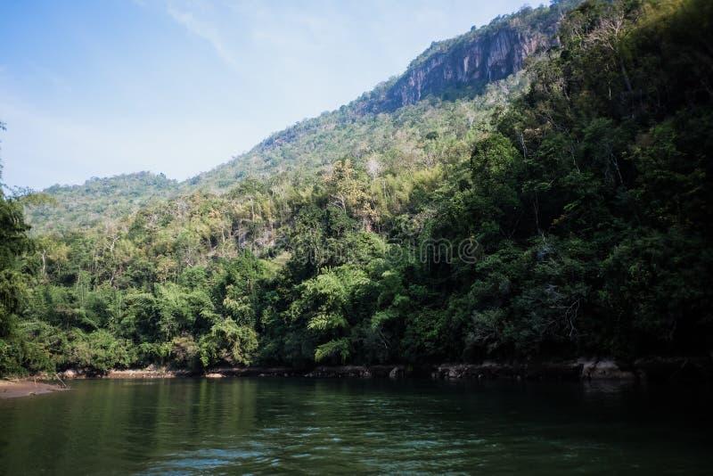 montagne de rivière de forêt photos stock