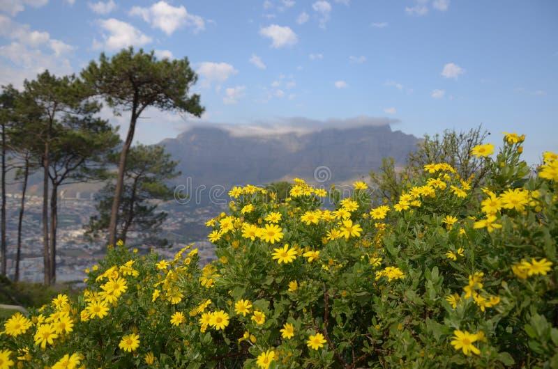 Montagne de Tableau, Capetown photographie stock
