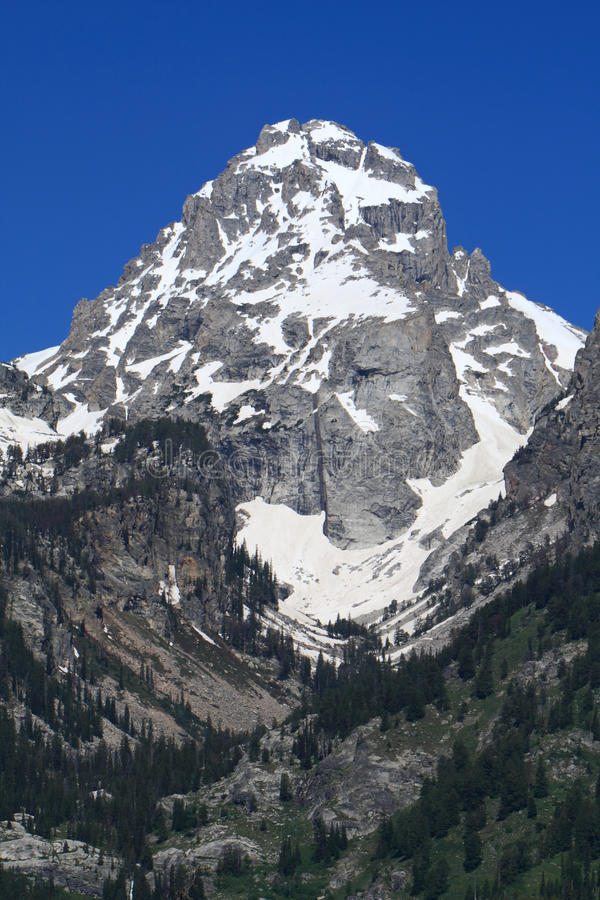 Montagne de Teton photo libre de droits