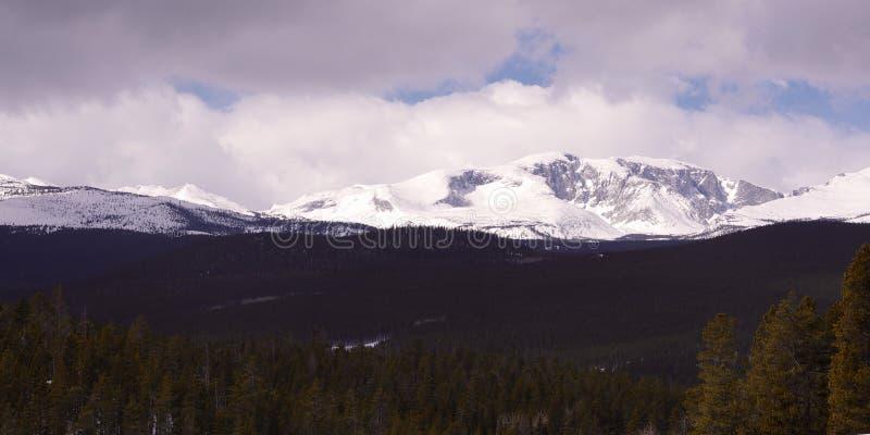 Montagne del Big Horn, Wyoming fotografia stock libera da diritti