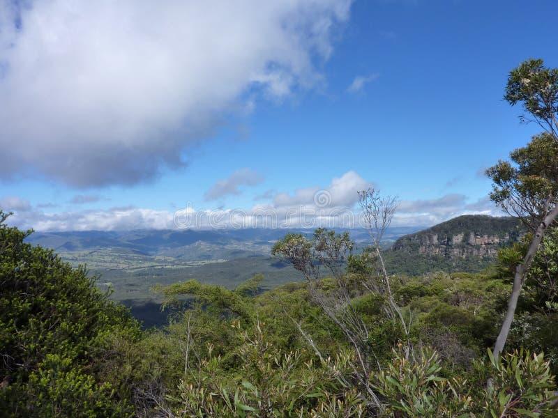 Montagne del blu di Australias fotografie stock libere da diritti
