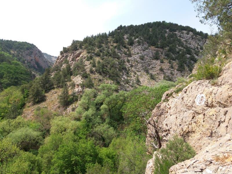 Montagne del canyon di Chernorechensky fotografie stock libere da diritti