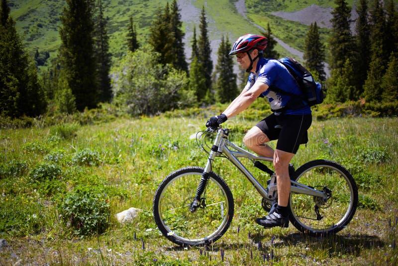 montagne del sentiero per pedoni del motociclista fotografia stock libera da diritti