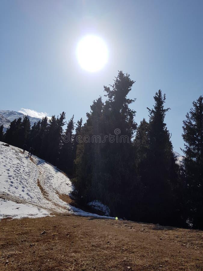 Montagne della neve kazakhstan Alatau immagine stock