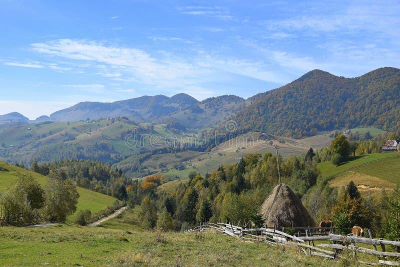 Montagne della Romania la Transilvania fotografia stock libera da diritti