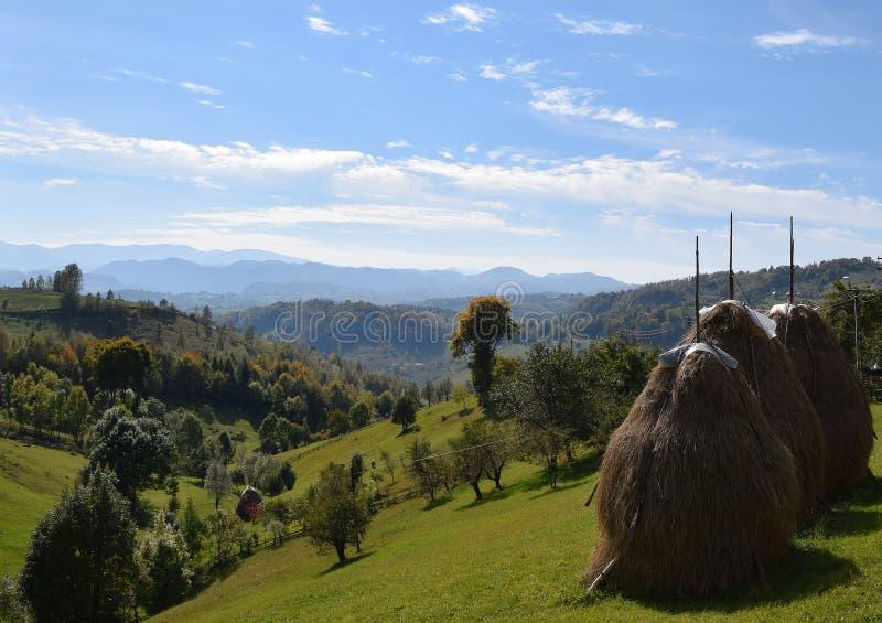 Montagne della Romania la Transilvania immagine stock