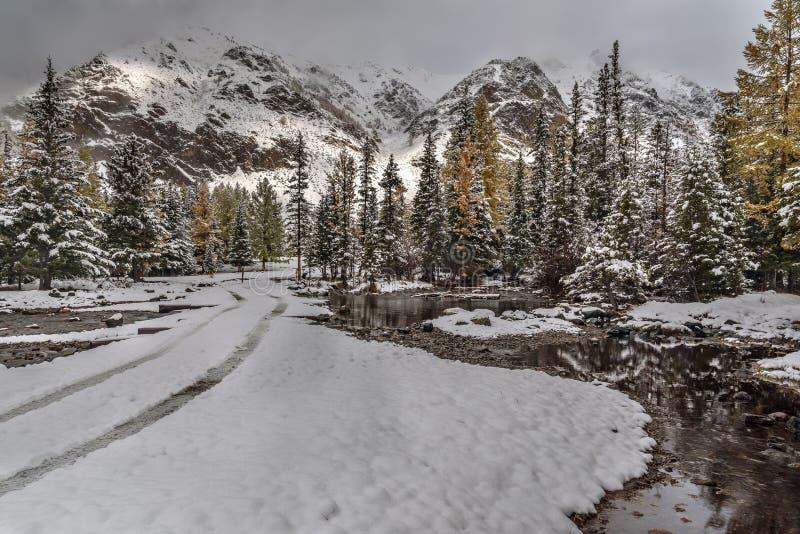Montagne di autunno del fiume della neve della foresta fotografie stock libere da diritti