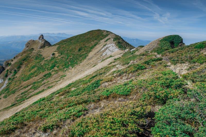 Montagne di Cheia II immagini stock
