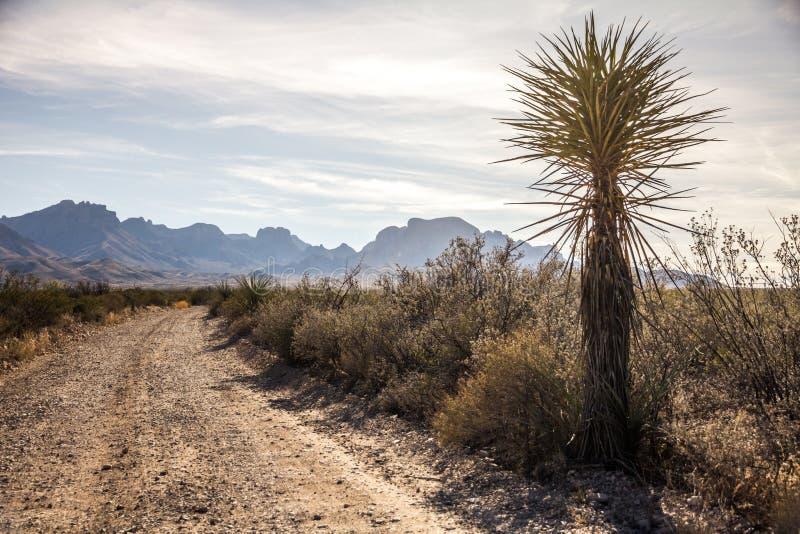 Montagne di Chisos dalla strada della ghiaia, grande parco nazionale della curvatura, il Texas fotografia stock libera da diritti