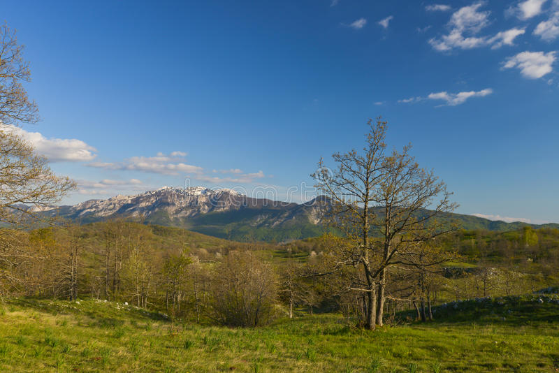 Montagne di Durmitor nel Montenegro immagini stock libere da diritti