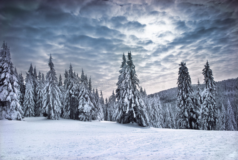Montagne di inverno immagini stock libere da diritti
