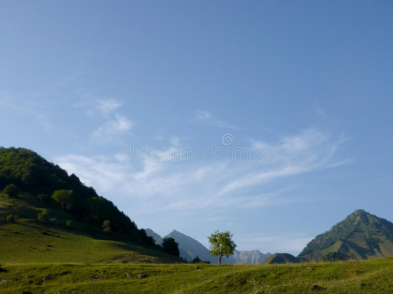 Montagne di Meadowin, Georgia fotografia stock libera da diritti