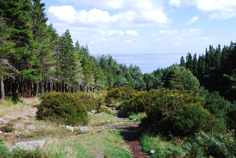 Montagne di Mourne, Irlanda del Nord immagini stock libere da diritti
