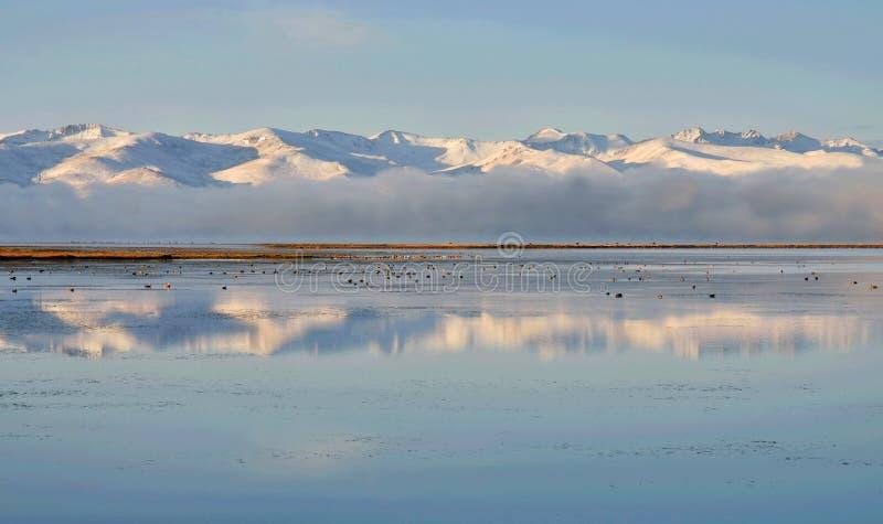 Montagne di Tien Shan vicino ad acqua calma del lago figlio-Kul, punto di riferimento naturale del Kirghizistan, Asia centrale immagini stock