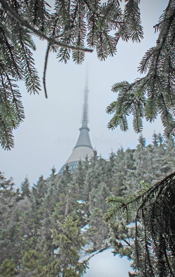 Montagne du› d de tÄ de ¡ de JeÅ sous la neige photographie stock libre de droits